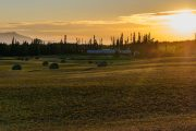 Farming on the Nechako Plateau