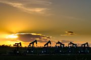 Pump jacks in a fileds at sunset.