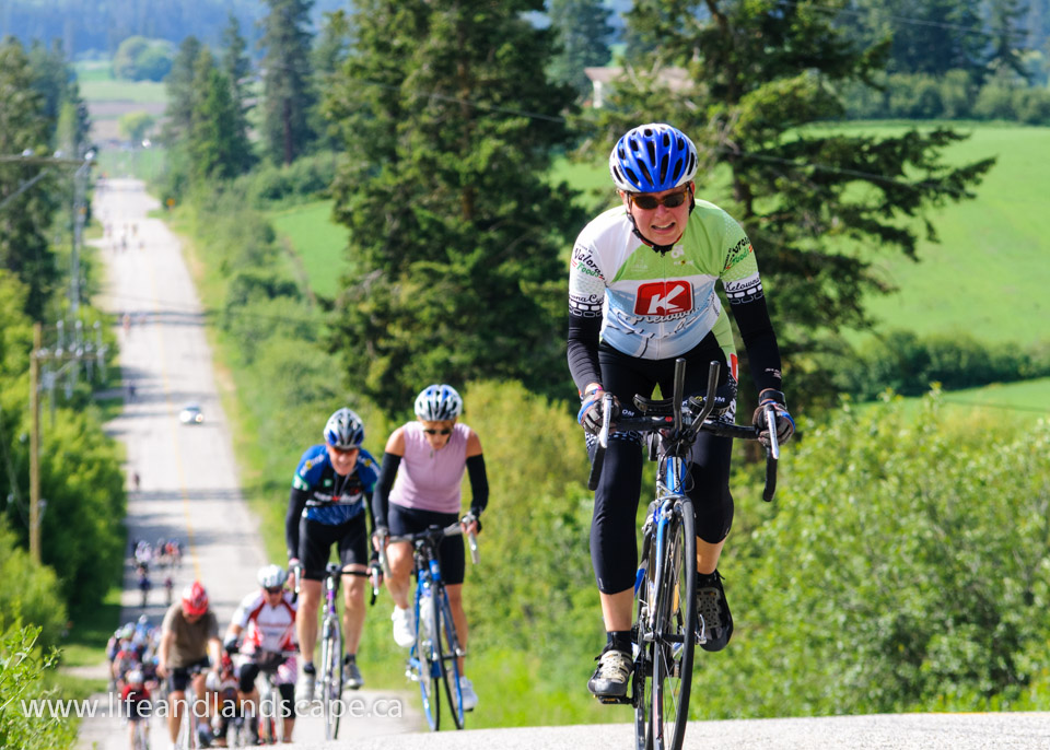 Photos from 2013 Century Ride posted