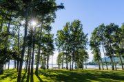 Park at Stuart Lake