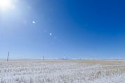 Winter prairie field under a sunny blue sky
