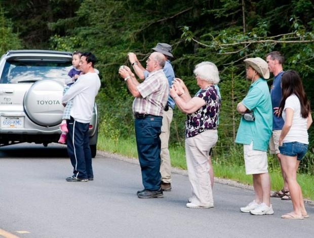 Photo of photographers on a road