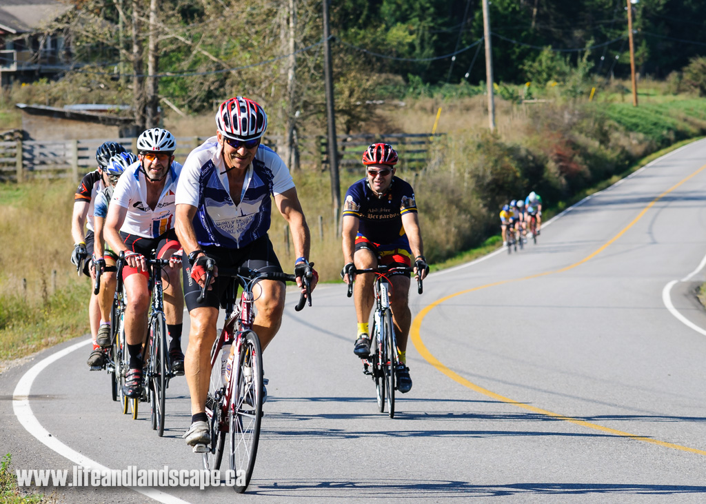 Photos from the 2013 Bike For Your Life Century Ride now available