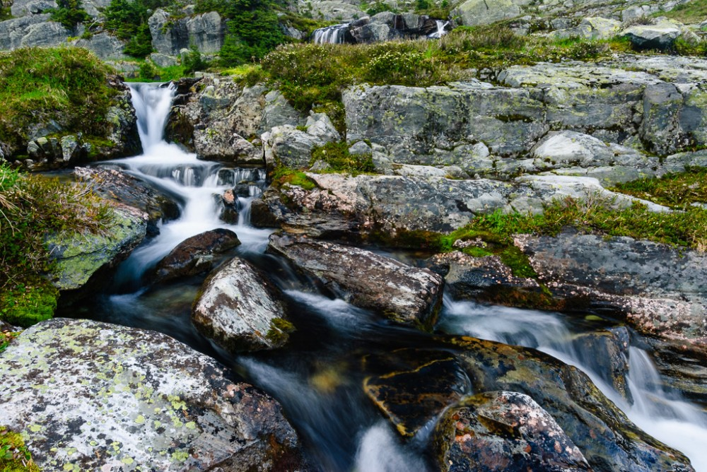 Waterfall Hermit Medows
